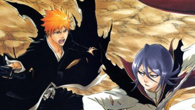 Photo of Bleach the Movie 3 – Fade to Black