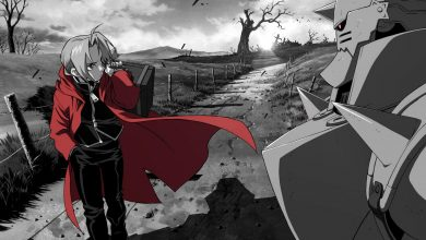 Photo of Fullmetal Alchemist – Brotherhood