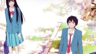 Photo of Kimi ni Todoke