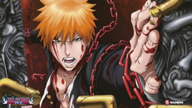 Photo of Bleach the Movie 4 – Hell Verse