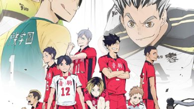 Photo of HAIKYU!! Land vs Sky